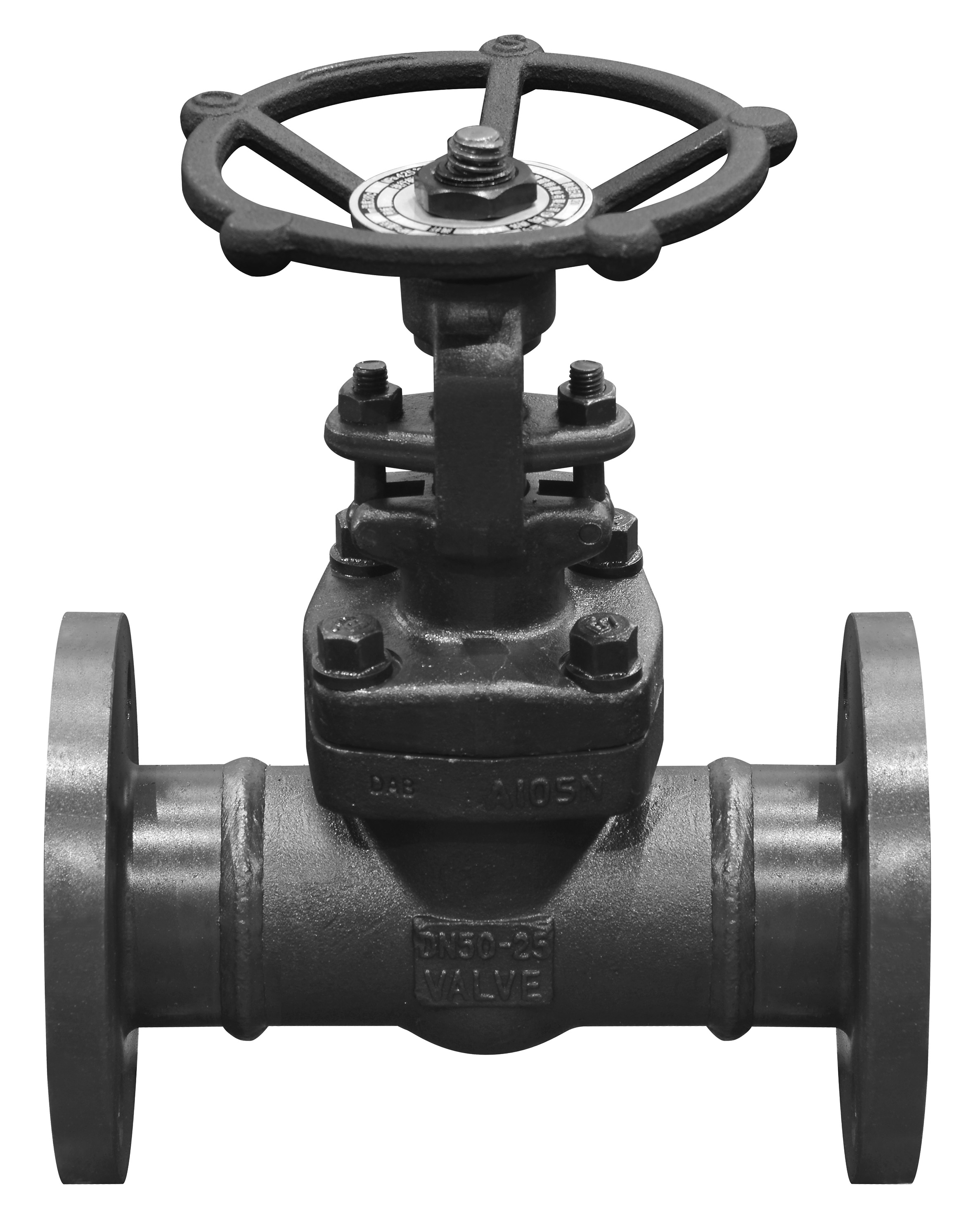 Forged small size globe valve